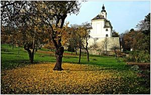 Obstwiese im Herbst, Sensenkurs Wien Rodaun