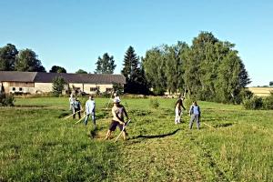 Schnitter im Waldviertel 2017