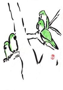 Grüne Vögel in Barcelona